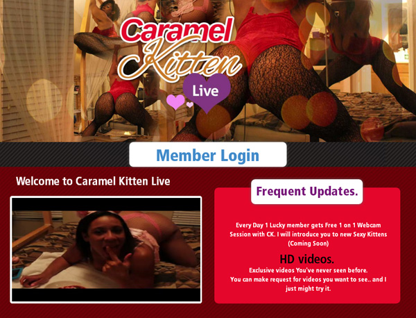 Caramelkittenlive.com Login Info
